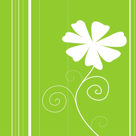 Beauty white Floweron and  green backgrounds card Vector