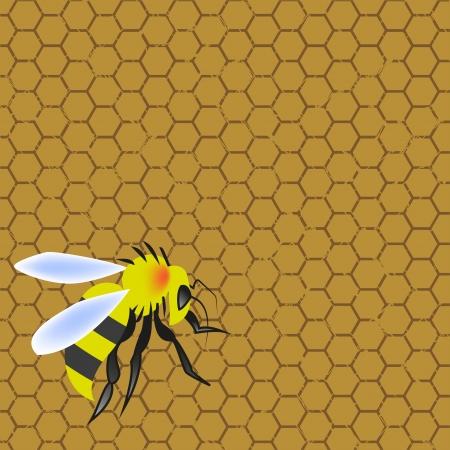 stinging: Sweet honeycomb and wasp stinging Illustration