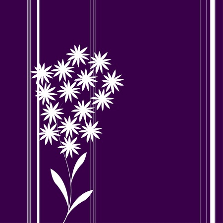 Illustrations with purple background and white daisies