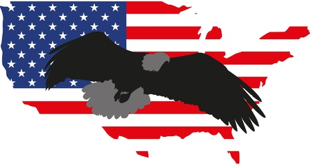 illustration silhouette eagle and America Vector