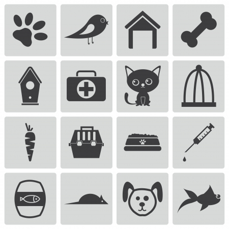 Vector black  pet icons set Vector