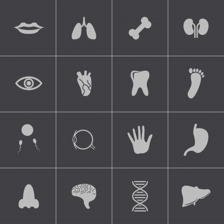 gastroenteritis: Vector black  anatomy  icons set