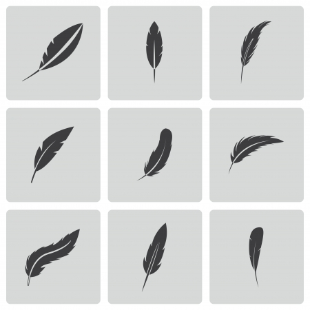 quill pen: feather icons set