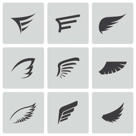 eagle wings: black wing icons set on white