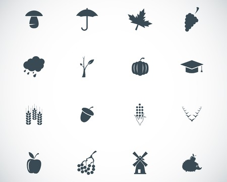 Vector black autumn icons set on white background Vector