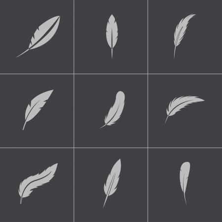 black feather: Vector black feather icons set
