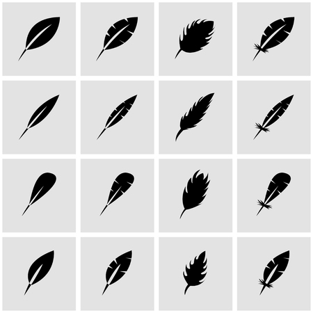 black feather: Vector black feather icon set on grey background