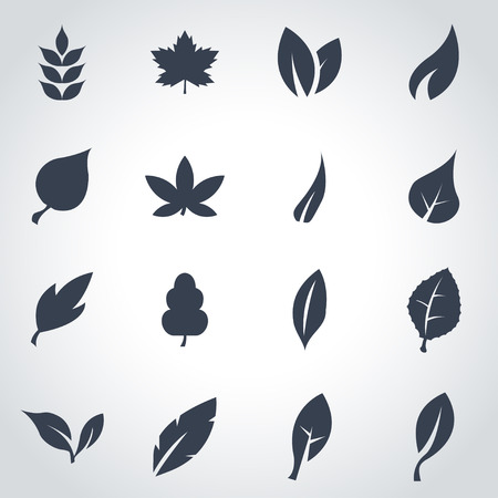 Vector black leaf icon set on grey background Çizim