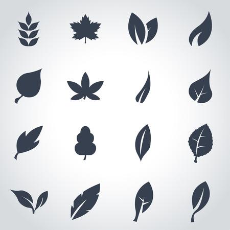 Vector black leaf icon set on grey background Illustration