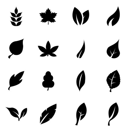 ecology icons: black leaf icon set on white background