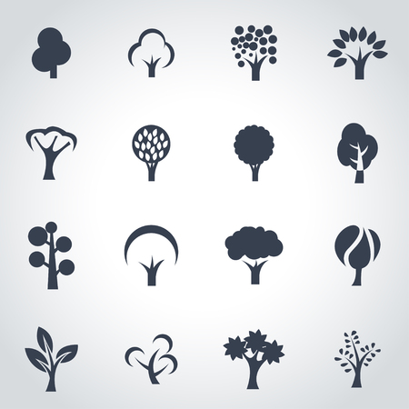 tree silhouettes: Vector black trees icon set on grey background Illustration