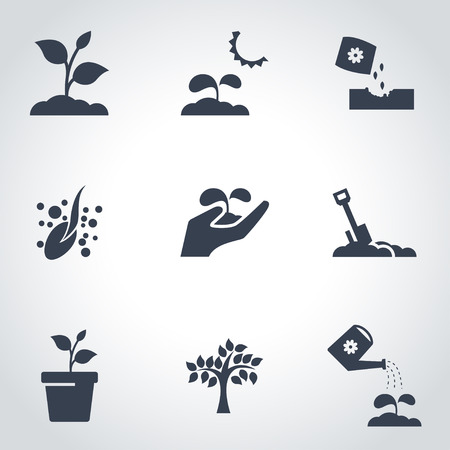 seed plant: Vector black growing icon set. Growing Icon Object, Growing Icon Picture, Growing Icon Image - stock vector