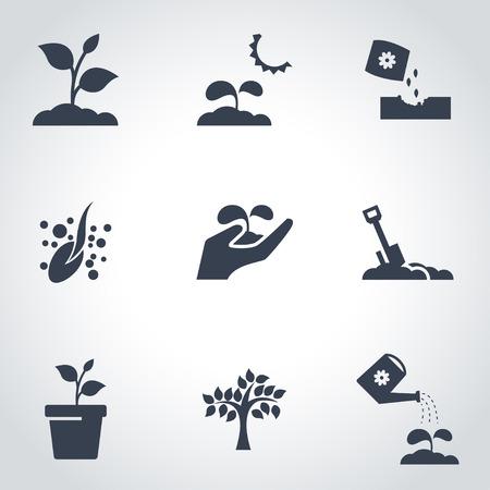 plante: Vector icône noire ensemble croissant. Growing Object Icon, Growing Icône Photo Growing Icône Image - Image vectorielle