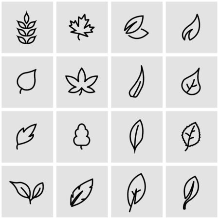 leaf line: Vector line leaf icon set. Leaf Icon Object, Leaf Icon Picture, Leaf Icon Image - stock vector
