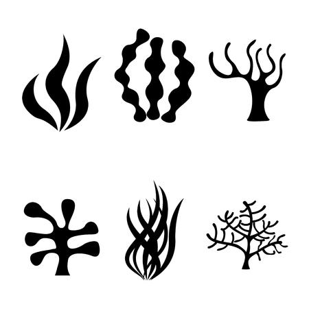 algas marinas: Vector de algas negro iconos conjunto sobre fondo blanco. siluetas de coral