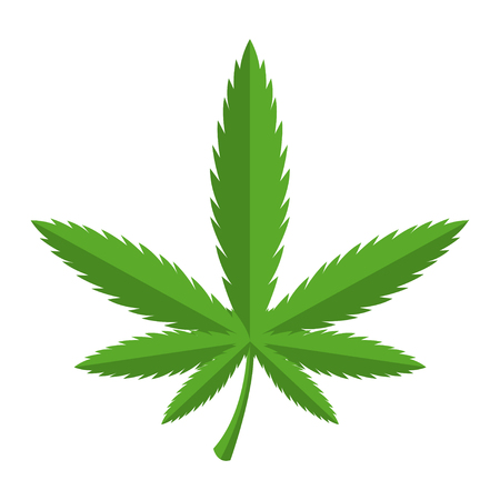 unlawful: Vector green cannabis icon. Marijuana leaf icon.