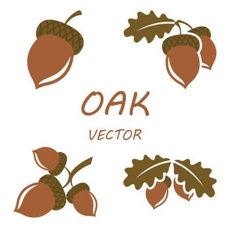 Vector iconos de roble plana establecidos en los fondos blancos