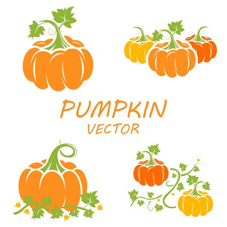 icons set: Vector flat pumpkin icons set on white backgrounds Illustration