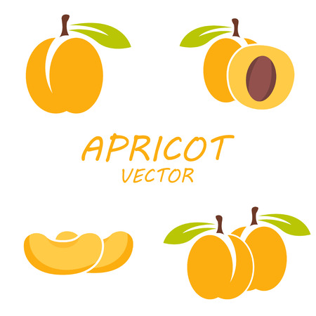 apricot: Vector flat apricot icons set on white background