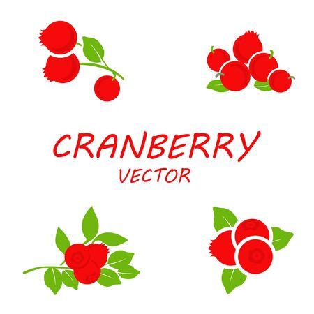 cranberry: Vector flat cranberry icons set on white background Illustration