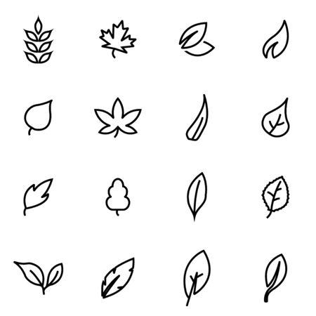 leaf line: Vector line leaf icon set on white background