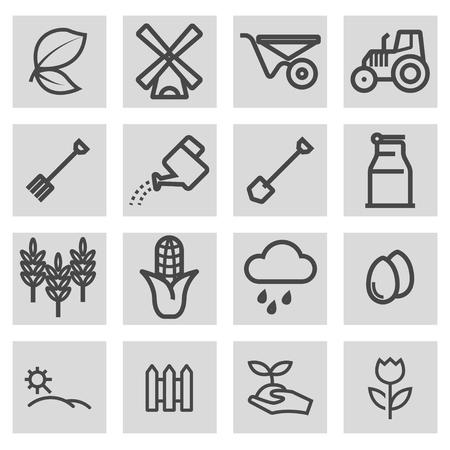 grain fields: Vector black line farming icons set on grey background