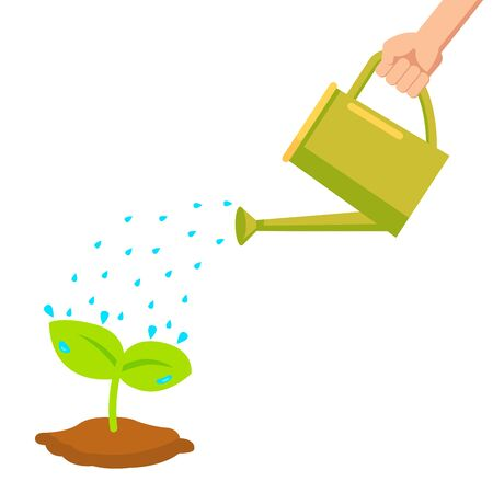 hand holding watering can watering plant in pot 向量圖像