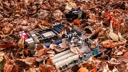 Discarded old broken motherboard