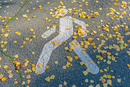 Pictured on the asphalt a pedestrian zone sign covered with autumn leaves