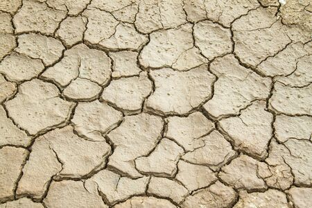 Cracked Ground  photo