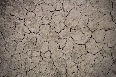 whether: Dark soil becomes drought and crack from hot whether