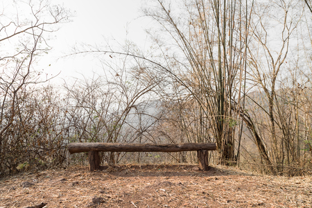 phukradueng: A sitting wood bench with small bamboo and sunny sky as a blur background. This bench is on the walk way of mountain inside Phukradueng national park in Loei province of Thailand.
