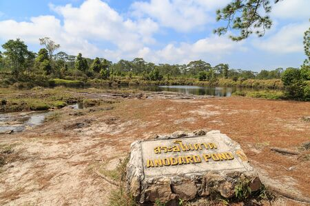 phukradueng: Thai and English name of Anodard pond on the rock in Phukradueng national park of Loei, Thailand. This pond has less of water during February 2016, floor has many pines leaf and sand.