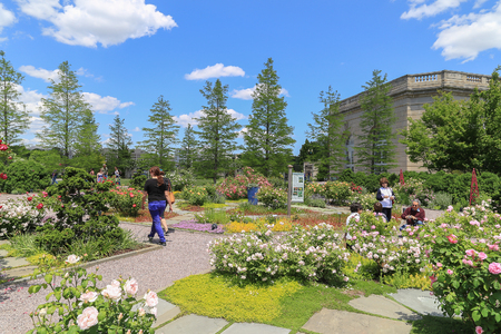 see the usa: Washington DC, USA - May 19, 2014: Outdoor of national garden in Botanic Garden with blue sky and cloud. People walking around to see the difference kinds of tree and flower. Editorial