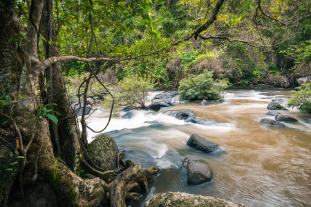 Motion blur of flowing mud river in rainy forest moving through rocks which having green tree and bush surround. It came from big waterfall inside the jungle. Stock Photo
