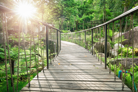 Low view over surface of wooden curved bridge hanging by rope inside green garden with sunlight in afternoon.