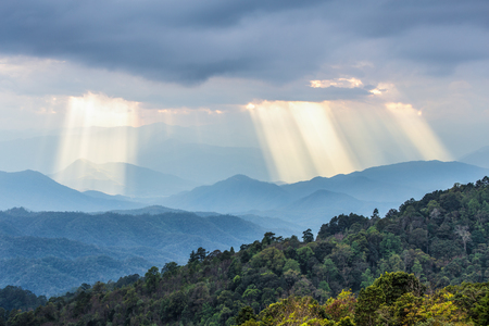 Top view of tropical green tree forest with shining sunbeams from cloudy sky to blue mountains range before sunset in winter season. 스톡 콘텐츠