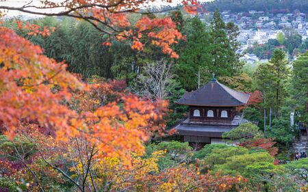 Kyoto, Japan - November 19, 2018: Ancient house in colorful park, tree change color during autumn and winter.
