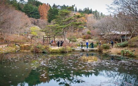 Kobe, Japan - November 25, 2018: Tourists walking on a way near big pond inside Rokko alpine botanical garden in autumn. Trees starting to change color from green to brown and leaves fall on ground.