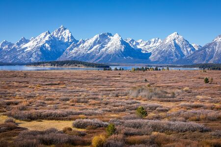 Snow cover mountain peak of Grand Teton and Mount Moran outstanding in blue sky beside Jackson Lake and Willow Flats of Grand Teton National Park, Wyoming, USA. Willow Flats is popular place for wildlife watching.