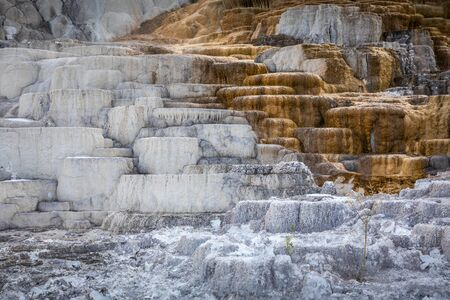 Terraces of Mammoth hot spring in two tones colors, white and brown made by calcium carbonate, Yellowstone National Park, Wyoming, USA. Stock fotó