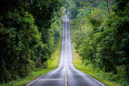 Straight road in countryside on hill slope surrounding by green trees inside tropical rainforest area.