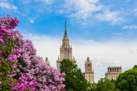 A branch of blossoming lilac in the daylight, Moscow State University background