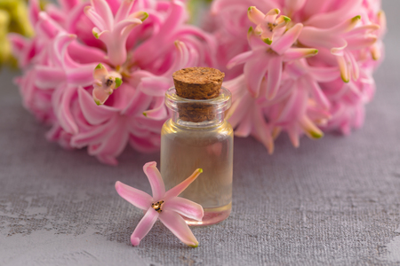 Flower hyacinth essential oil in bottle, cosmetic and perfume concept on textured background