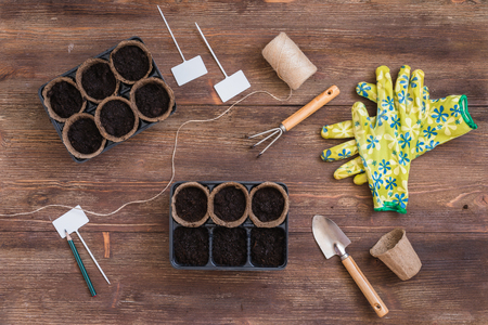 Stages of planting seeds, preparation, gardeners tools and utensils, colorful gloves, organic pots, toned