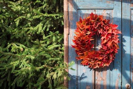 Autumn colorful maple leaves wreath on the blue rustic door, toned Foto de archivo - 131858229