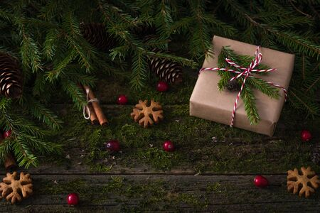 New Year Christmas composition with a present wrapped in craft paper on natural moss background with fresh cranberries, cones, fir-tree branches, cinnamon, cookies, zero waste holiday concept
