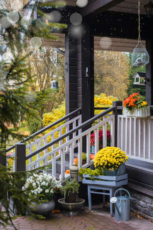 Pumpkins, colorful potted flowers on front door steps of the house, terrace, autumn holidays decoration