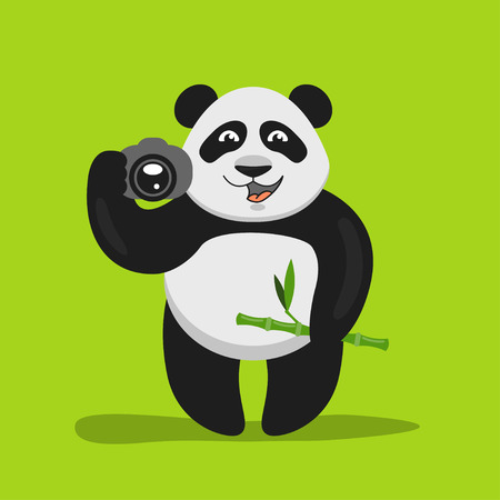 Vector illustration of funny panda holding the camera