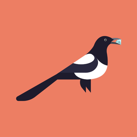 magpie: Vector illustration of magpie, holding the diamond.